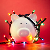 piggy bank lights