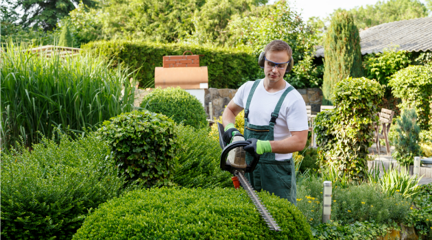 Hiring a gardener - how much to pay | Gransnet on Gardening  id=61281