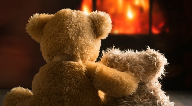 bears in front of fire