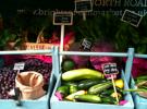 Brighton Farm Market